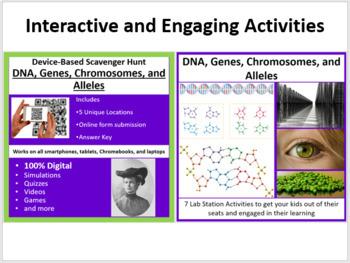 DNA, Genes, Chromosomes, and Alleles - 5E Lesson Bundle