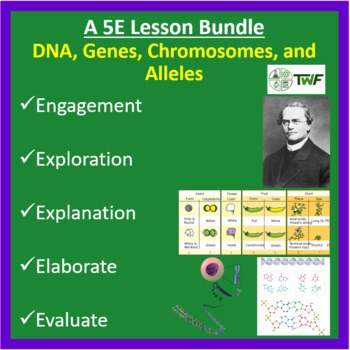 DNA, Genes, Chromosomes, and Alleles - 5E Lesson Bundle