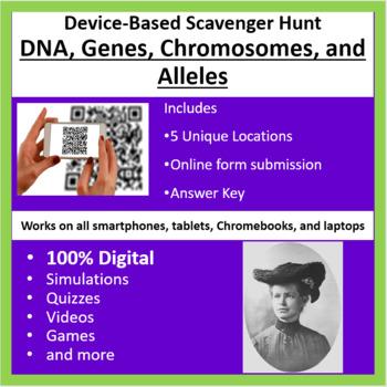 DNA, Genes, Chromosomes, and Alleles – A Digital Scavenger Hunt Activity