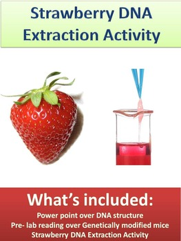 strawberry dna extraction lab