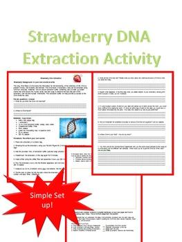DNA Activities