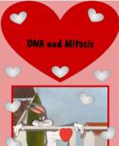 DNA & Mitosis Digital Notebook