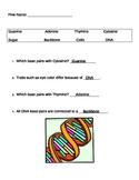 DNA Modeling Lesson Plan Bundle