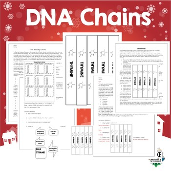 DNA Models for the Holiday