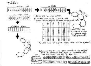 DNA Mutation Coloring sheet  and Practice