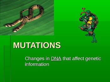 DNA Mutations powerpoint