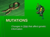 DNA Mutations powerpoint