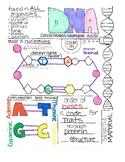 DNA Notes- Teacher Copy