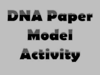 DNA Paper Models