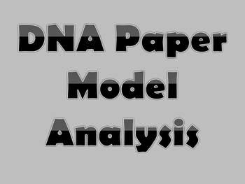 DNA Paper Models Analysis