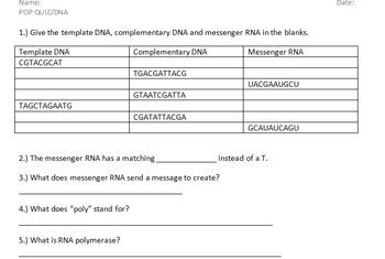 DNA Pop Quiz