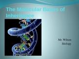 DNA Powerpoint Presentation with 10 Question Quiz (32 slides)