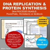 DNA Replication and Protein Synthesis Bundle: PowerPoint, Worksheets or Minibook