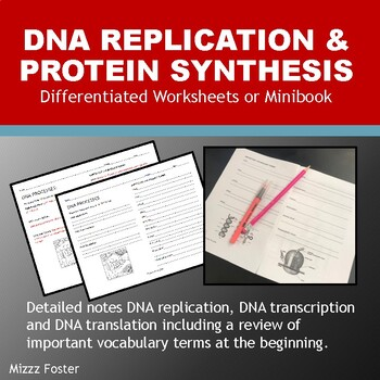 DNA Processes: DNA Replication and Protein Synthesis Worksheets with Key