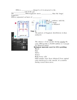 DNA Profiling Guided Notes page