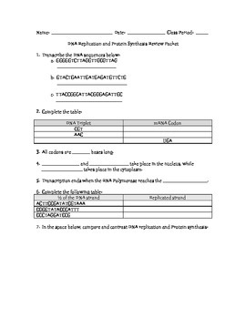 Dna Protein Synthesis Review Packet With Answer Key Tpt