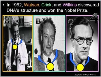 DNA Quiz Game