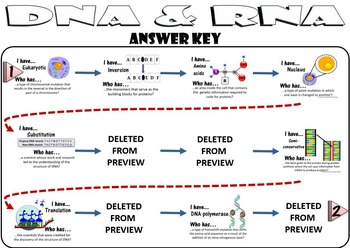 DNA & RNA Protein Synthesis (Transcription and Translation) I Have...Who Has...