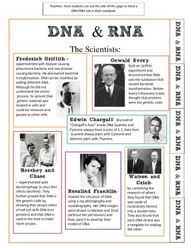 DNA, RNA, Protein Synthesis Interactive Notebook