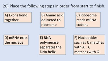 DNA, RNA, Protein Synthesis Review Game