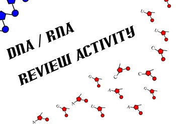 DNA / RNA Review Activity