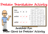 DNA, RNA Transcription, Protein Translation Activity