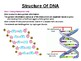 DNA, RNA and Genetic Code.