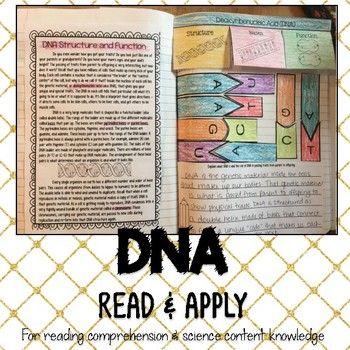 DNA Reading Comprehension Interactive Notebook