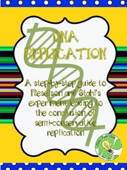 DNA Replication- A Step-By-Step Guide to Meselson and Stahl's Experiment