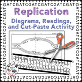 DNA Replication Activity, Diagram, and Reading for High School Biology