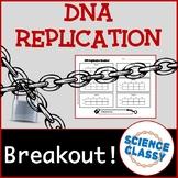 DNA Replication Breakout Activity