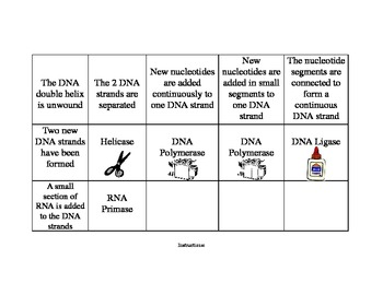DNA Replication Matching