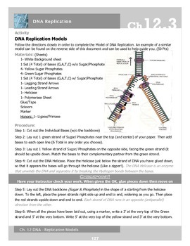 DNA Replication Model & Photo Journal