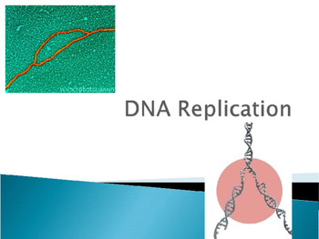 DNA Replication PowerPoint