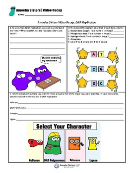 DNA Replication Recap by The Amoeba Sisters- Free Student Handout