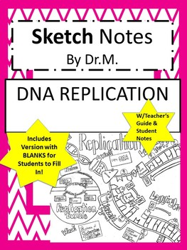DNA Replication Sketch Notes W/Teacher Guide, Notes & Student FIB Sketch Notes!