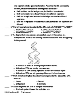 DNA Replication Test