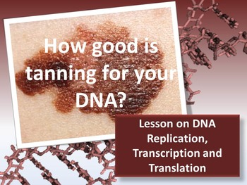 DNA: Replication, Transcription and Translation