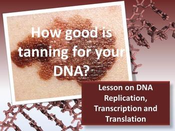DNA: Replication, Transcription and Translation