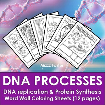 Protein Synthesis: DNA Replication, Transcription, Translation Coloring Sheets