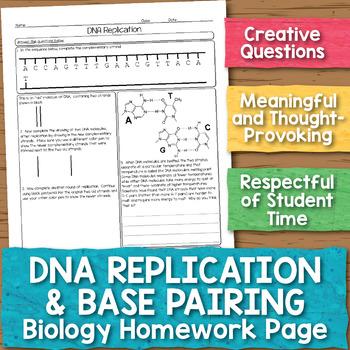 Dna replication teaching resources teachers pay teachers dna replication and base pairing biology homework worksheet fandeluxe Gallery
