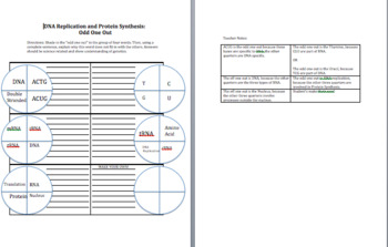 DNA Replication and Protein Synthesis Homework Sheet