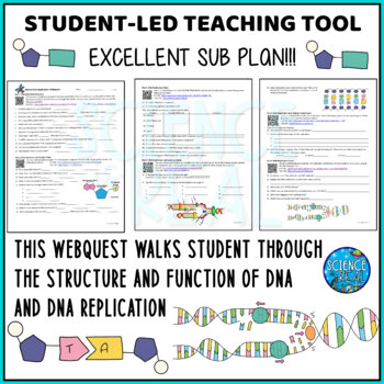 DNA Replication and RNA Protein Synthesis Virtual Lab Webquest Activity