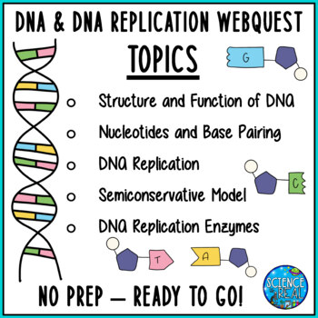 DNA and DNA Replication Webquest - Distance Learning ...