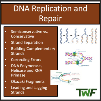 DNA Replication and Repair - A Senior Biology PowerPoint L