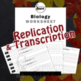 DNA Replication and Transcription Worksheet - Practice Bas