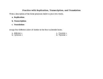 DNA Replication and Translation