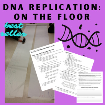 DNA Replication on the floor