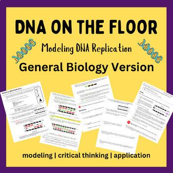 Dna replication teaching resources teachers pay teachers dna replication on the floor best seller fandeluxe Gallery