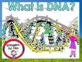 DNA  POWER POINT